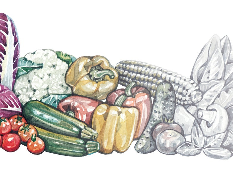 Carbon emissions are sucking the nutrition out of our food