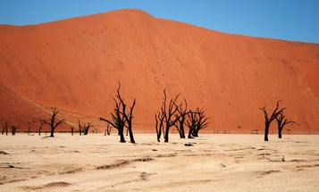Over Half The Earth Could Have Extreme Heat Waves Yearly By 2075