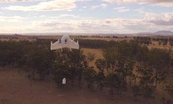 Google Already Testing Delivery Robots In Australia