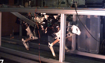 Video: MIT's Cheetah Robot Trots, Then Gallops