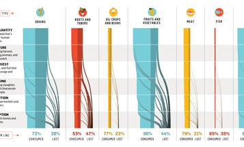How The World Wastes Food [Infographic]