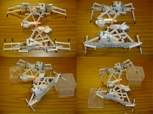 Video: Evolutionary Robots Learn to Crawl Before They Walk