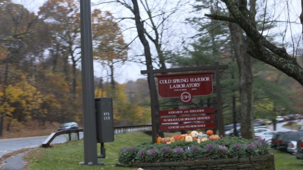 Cold Spring Harbor sign
