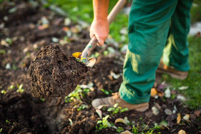 Hate the gym? Grow a garden instead.