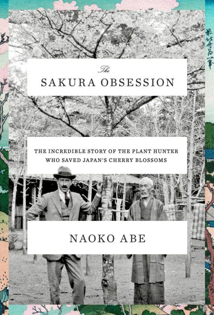 Sakura Obsession book excerpt Naoko Abe Collingwood 'Cherry' Ingram