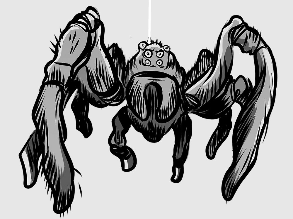 What it's like facing down tennis-ball-size spiders at work