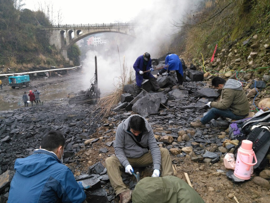 Chinese scientists digging up fossils at the Qingjiang site