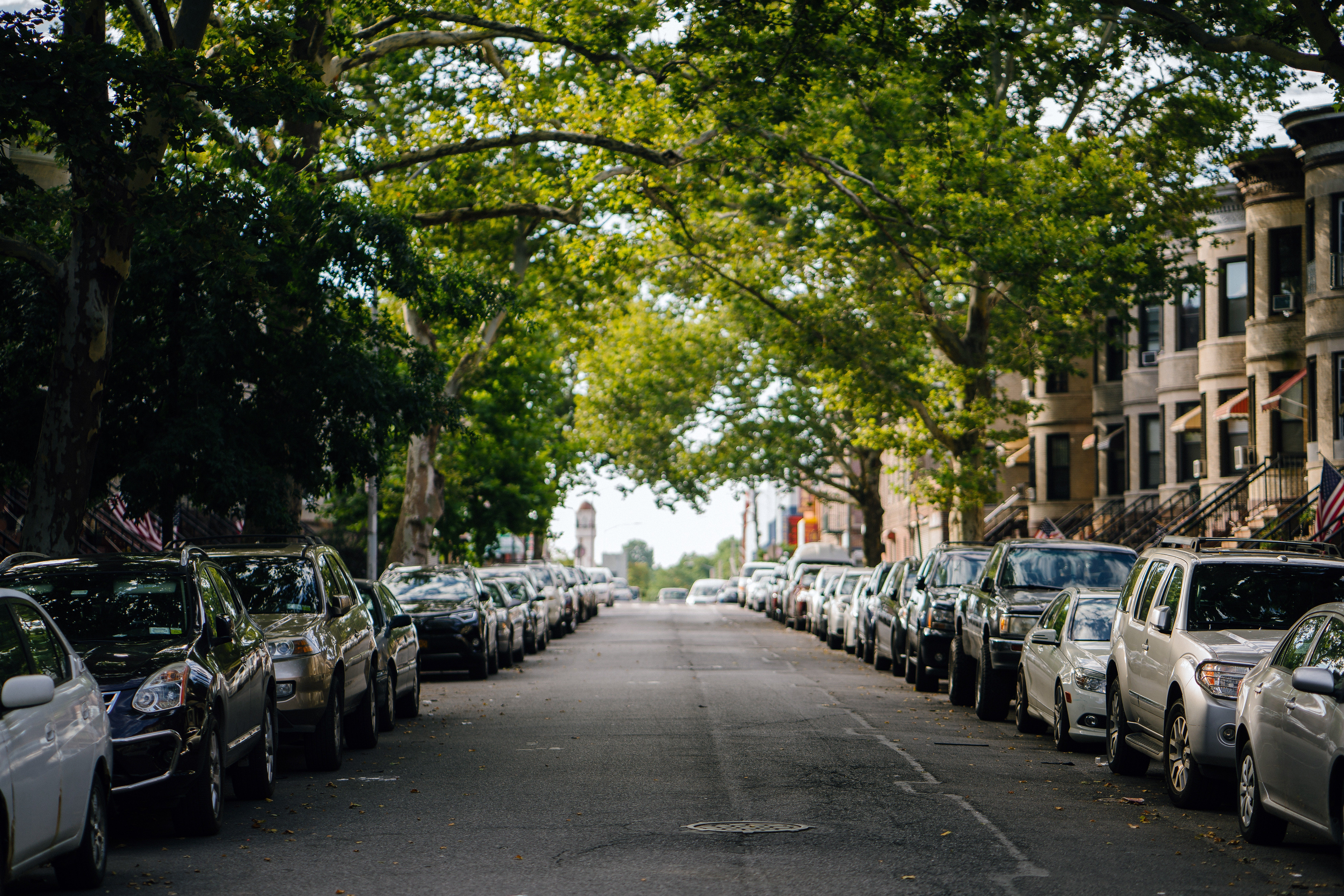 Here's how many trees are required to cool a city street