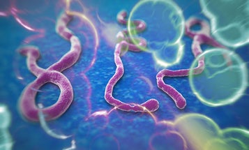 We're in the middle of the second-deadliest Ebola outbreak ever