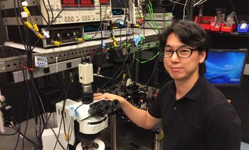 The Nano Lightbulb