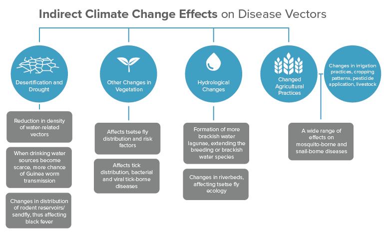 Climate disease vectors