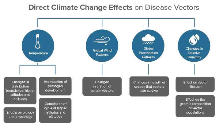 Climate disease vector