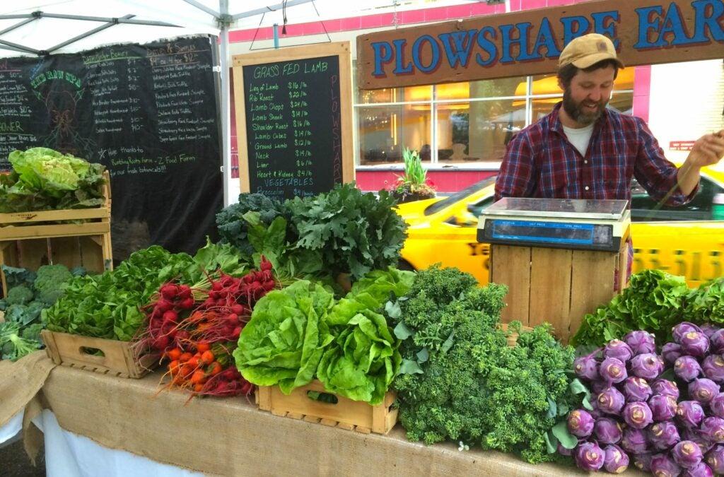 farmer Teddy Moynihan selling his produce at a market in Pennsylvania
