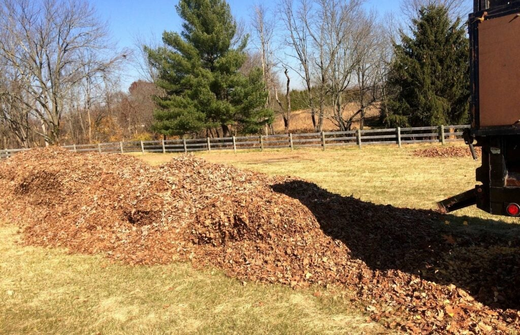 Soil coverage at Davis' Food Forest Landscaping