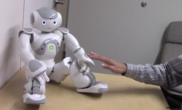 Touching Robots In Private Parts Makes People Uncomfortable