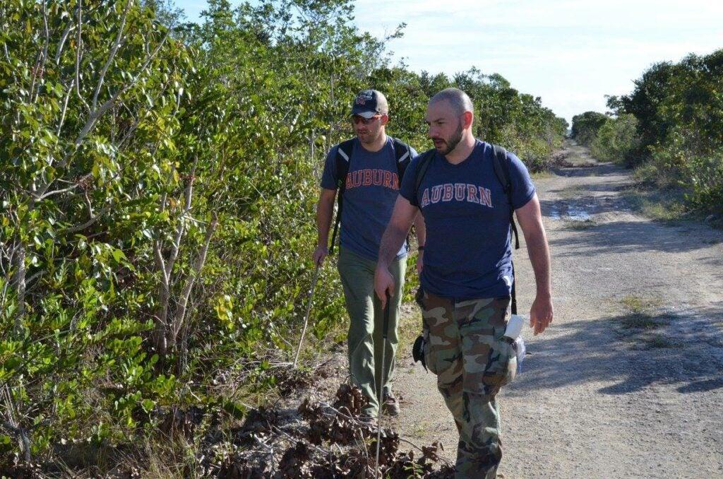 hunting for pythons