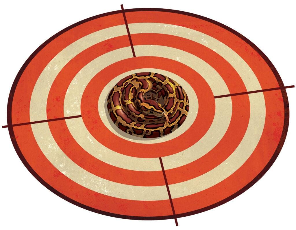 python on bullseye