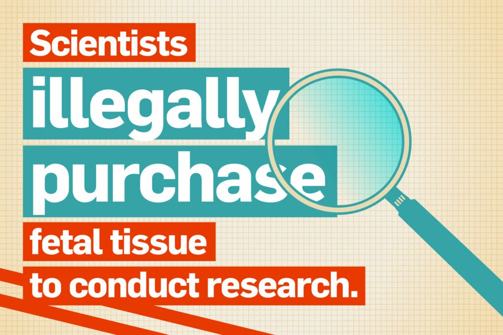 Scientists illegally purchase fetal tissue to conduct research.