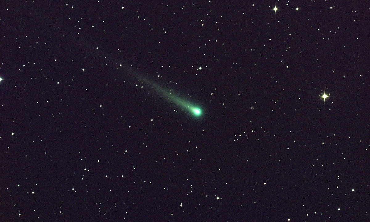 Comets could all come from the same place