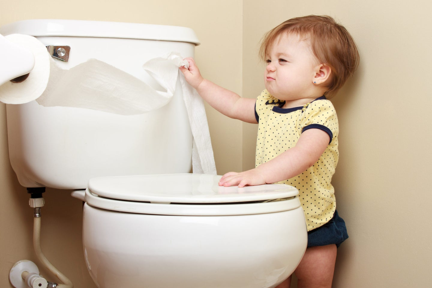 11 stories about poop to fix your crappy day