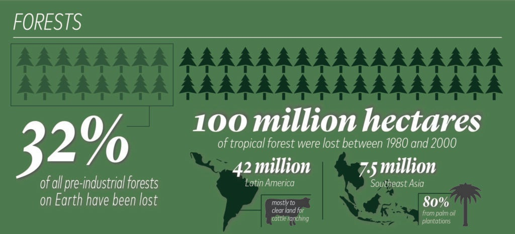 forests graphic