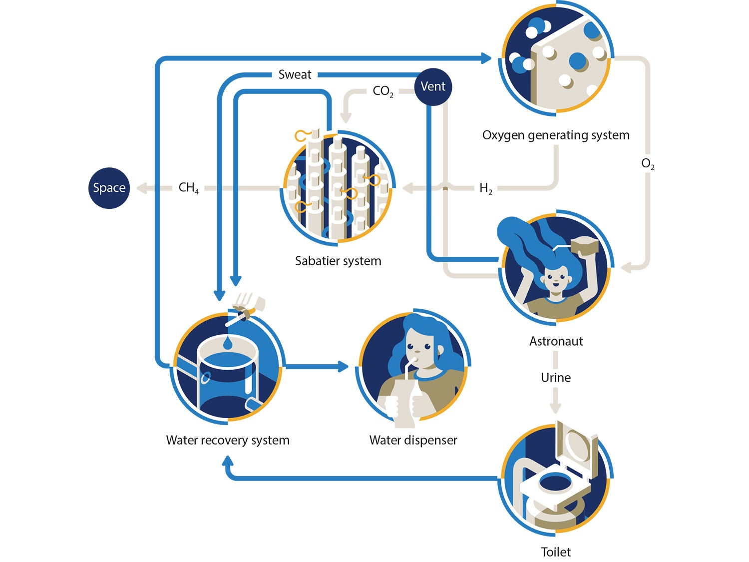 How the ISS recycles its air and water