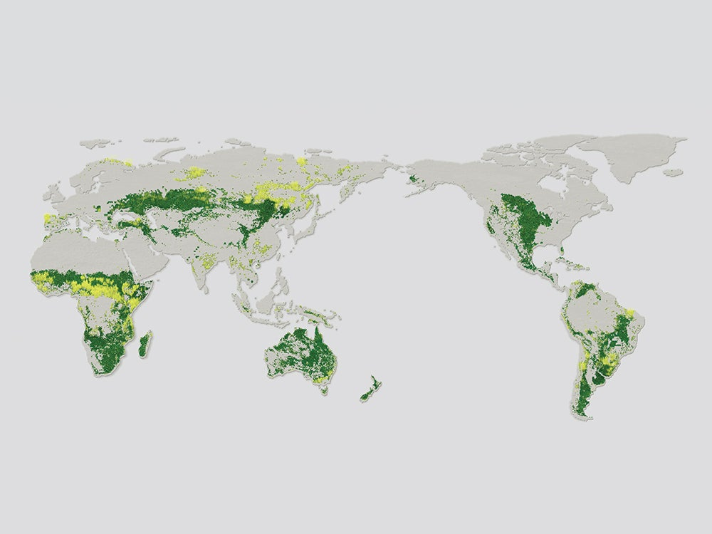 Only 10 percent of the world's grasslands are intact