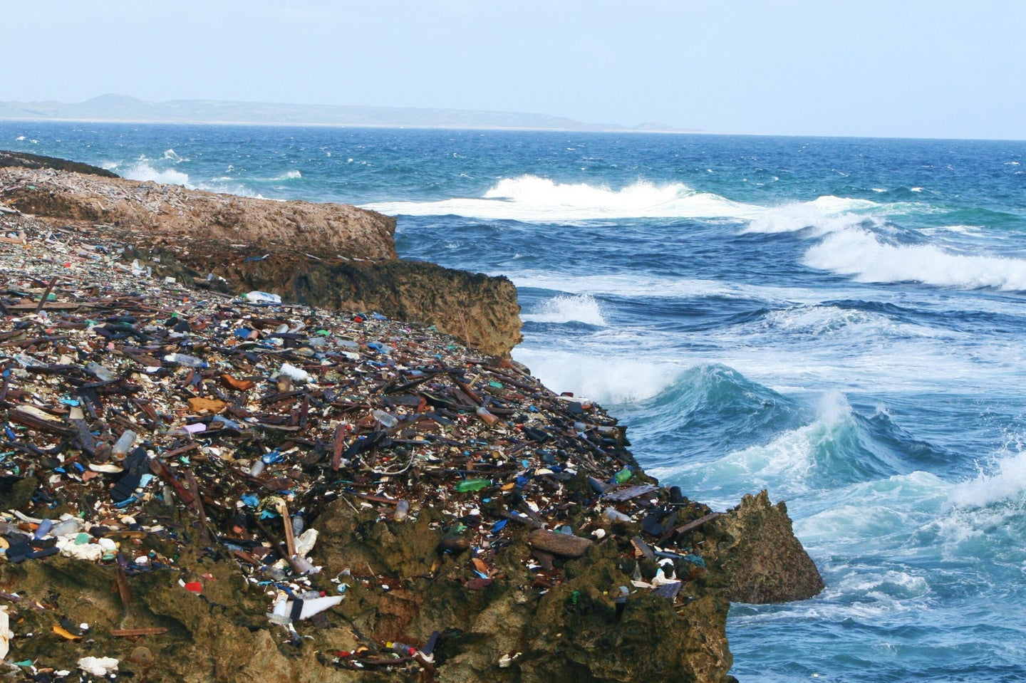 Plastic chemicals could harm the ocean bacteria that produce 10 percent of our oxygen
