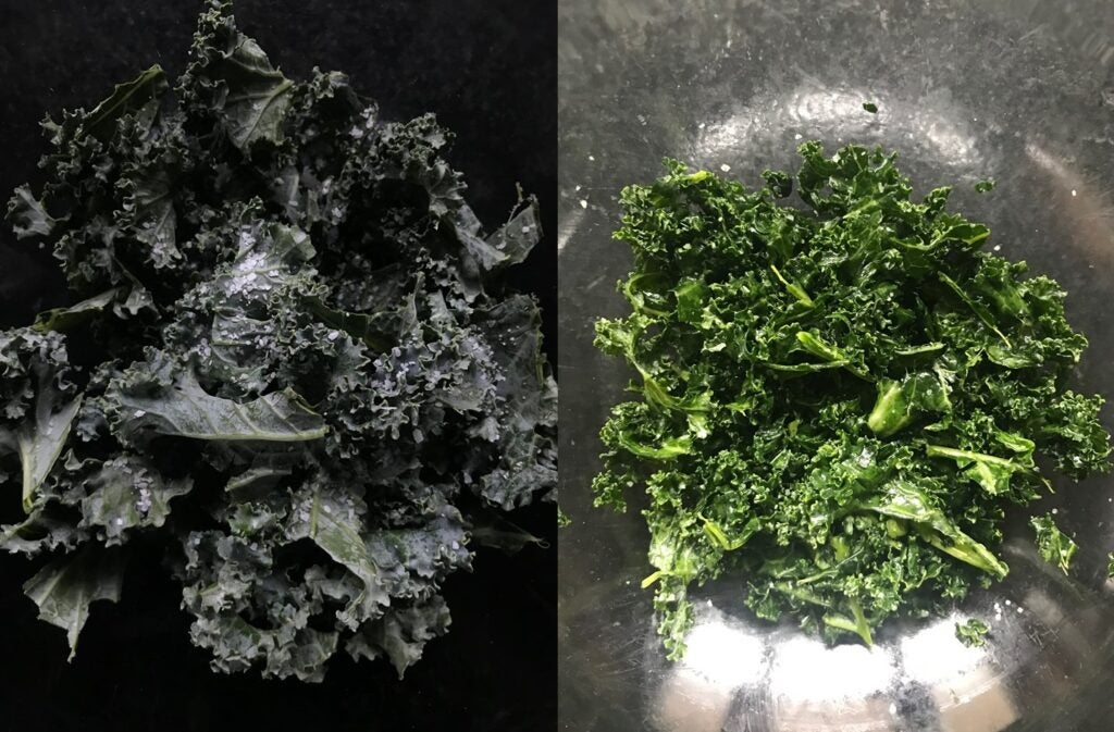 salt-rubbed kale