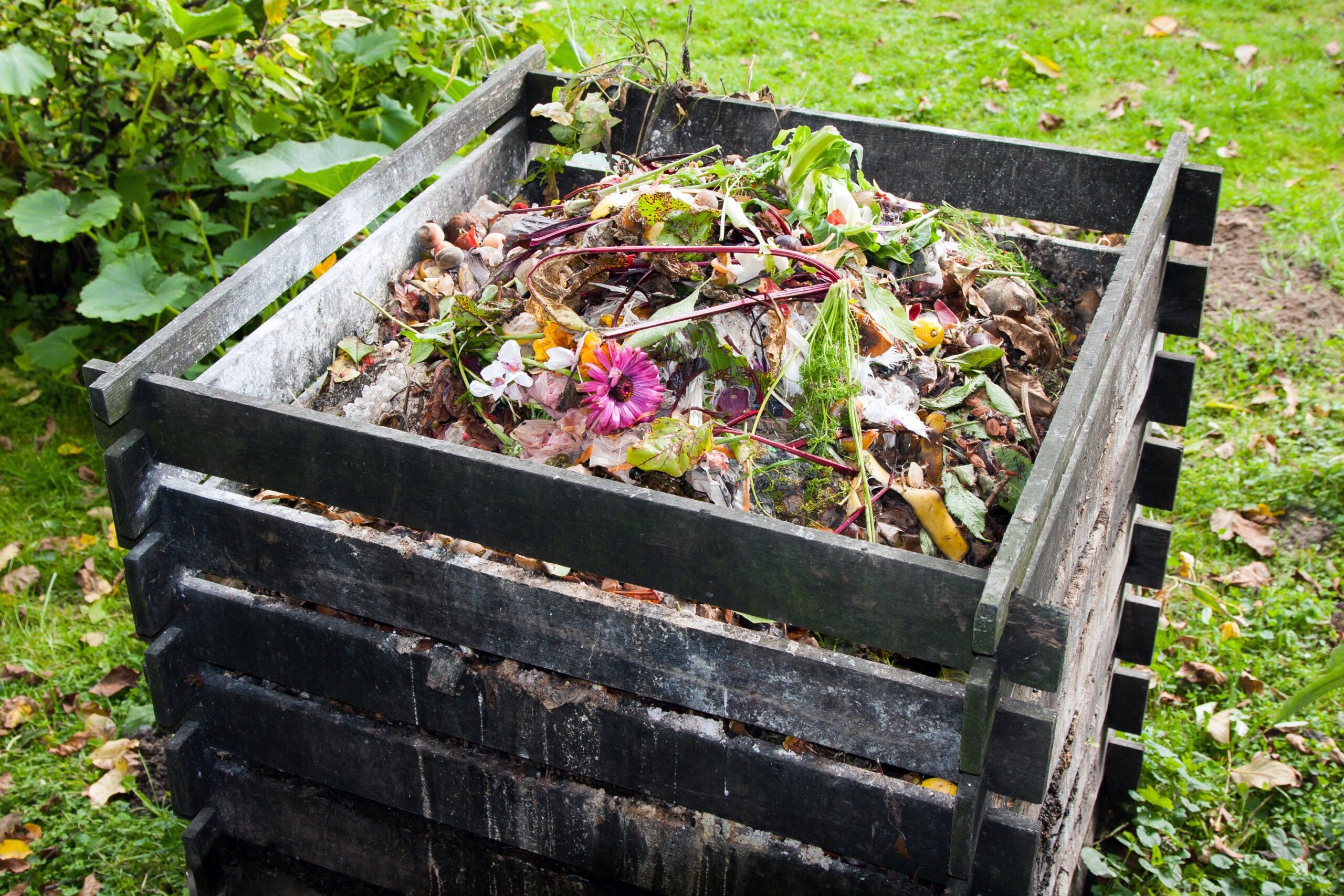 Eco-friendly packaging could be poisoning our compost