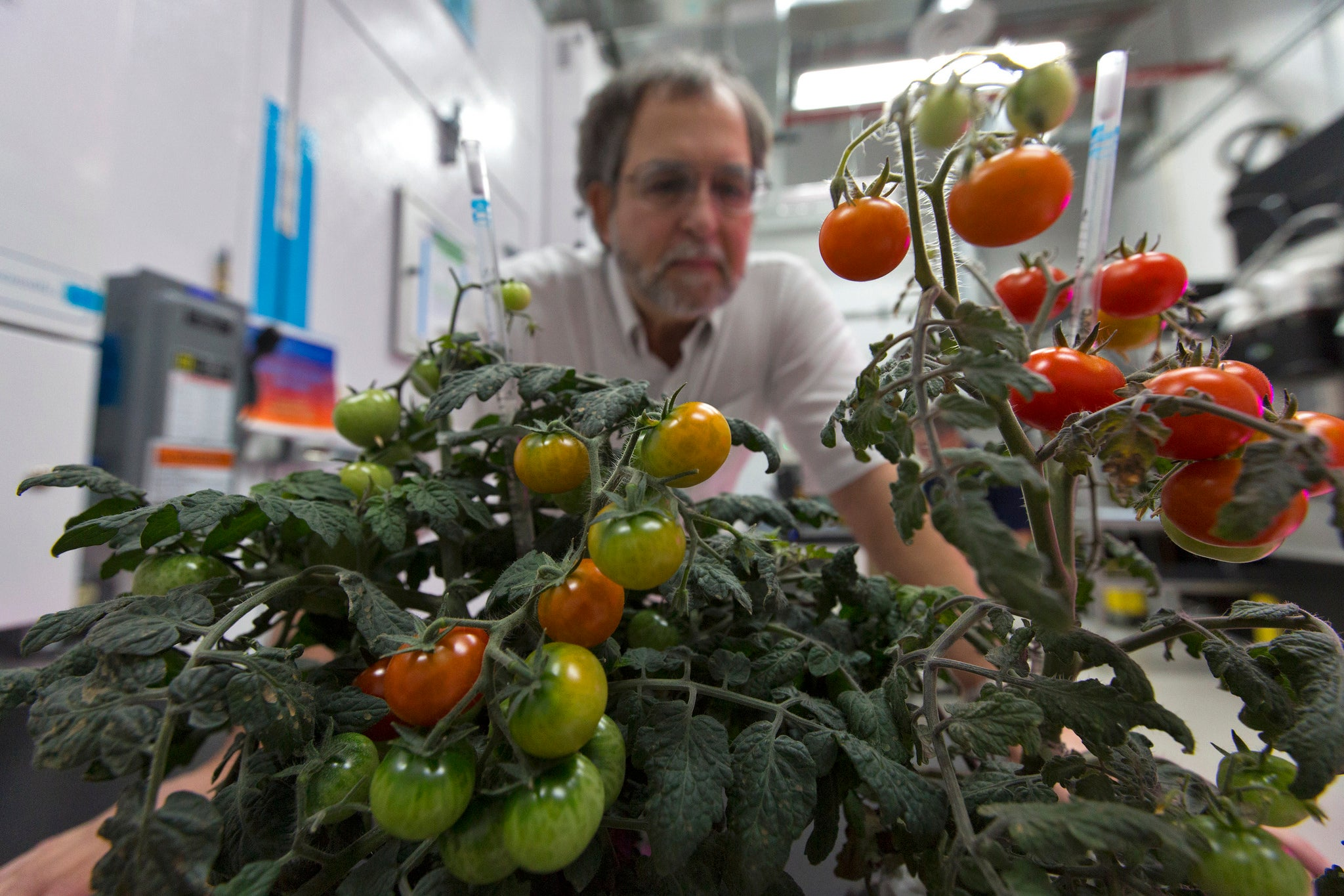 Watering space plants is hard, but NASA has a plan