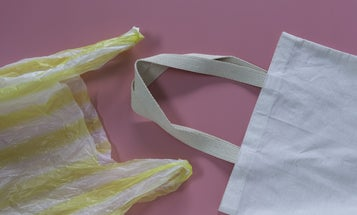 Plastic bags are still bad for the environment, despite misleading reports