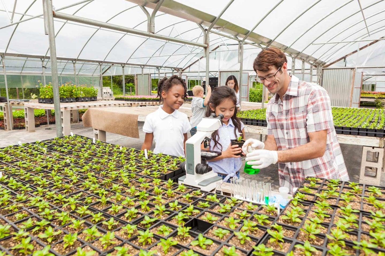 Nurturing the STEM Generation