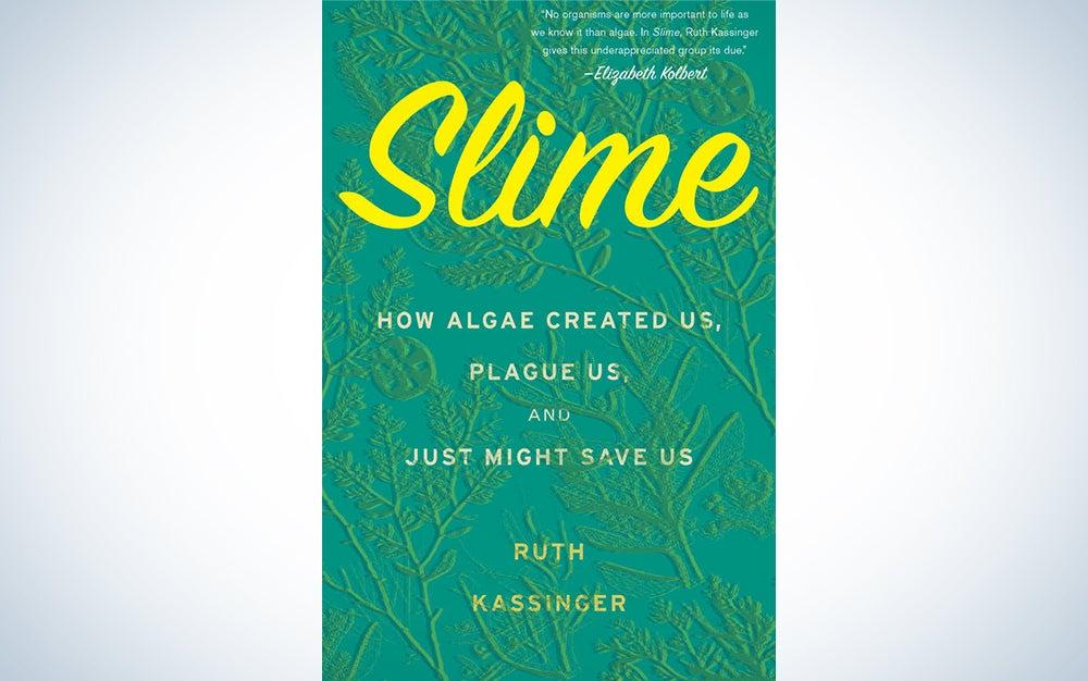 Slime by Ruth Kassinger