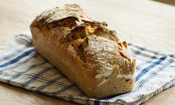 Never waste bread again