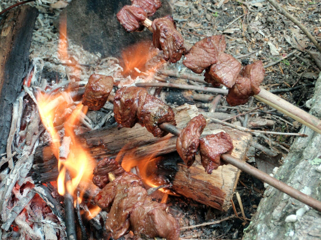 skewered meat over a campfire