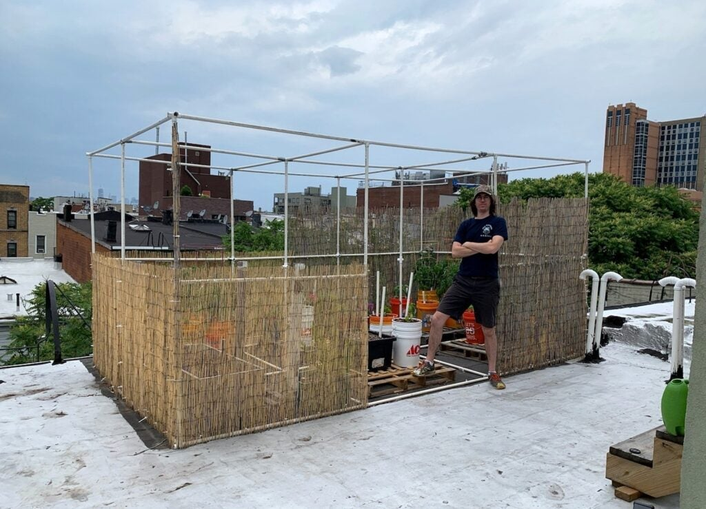 howto build a rooftop vegetable garden
