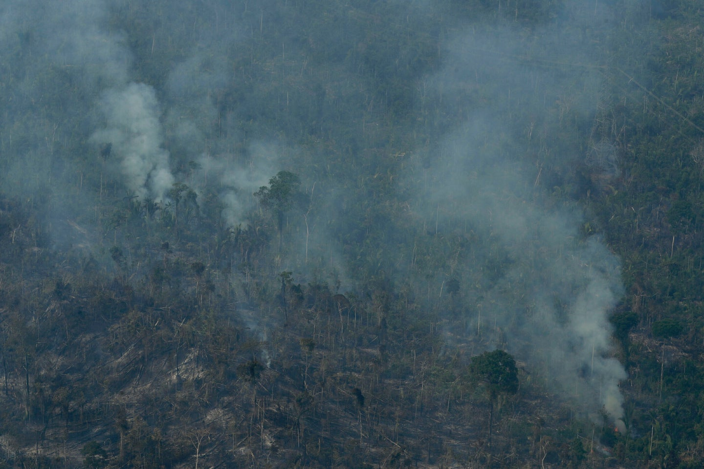 Fires in the Amazon have given us a lot to worry about, but the Earth's oxygen supply isn't one of them