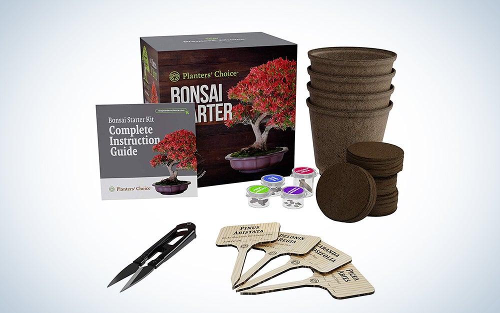 Planters' Choice Bonsai Starter Kit