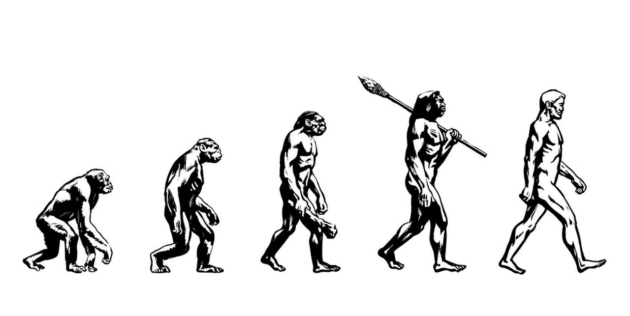 Evolution doesn't work the way you think it does