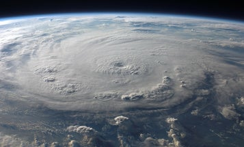 What the president can teach us about reading hurricane forecasts