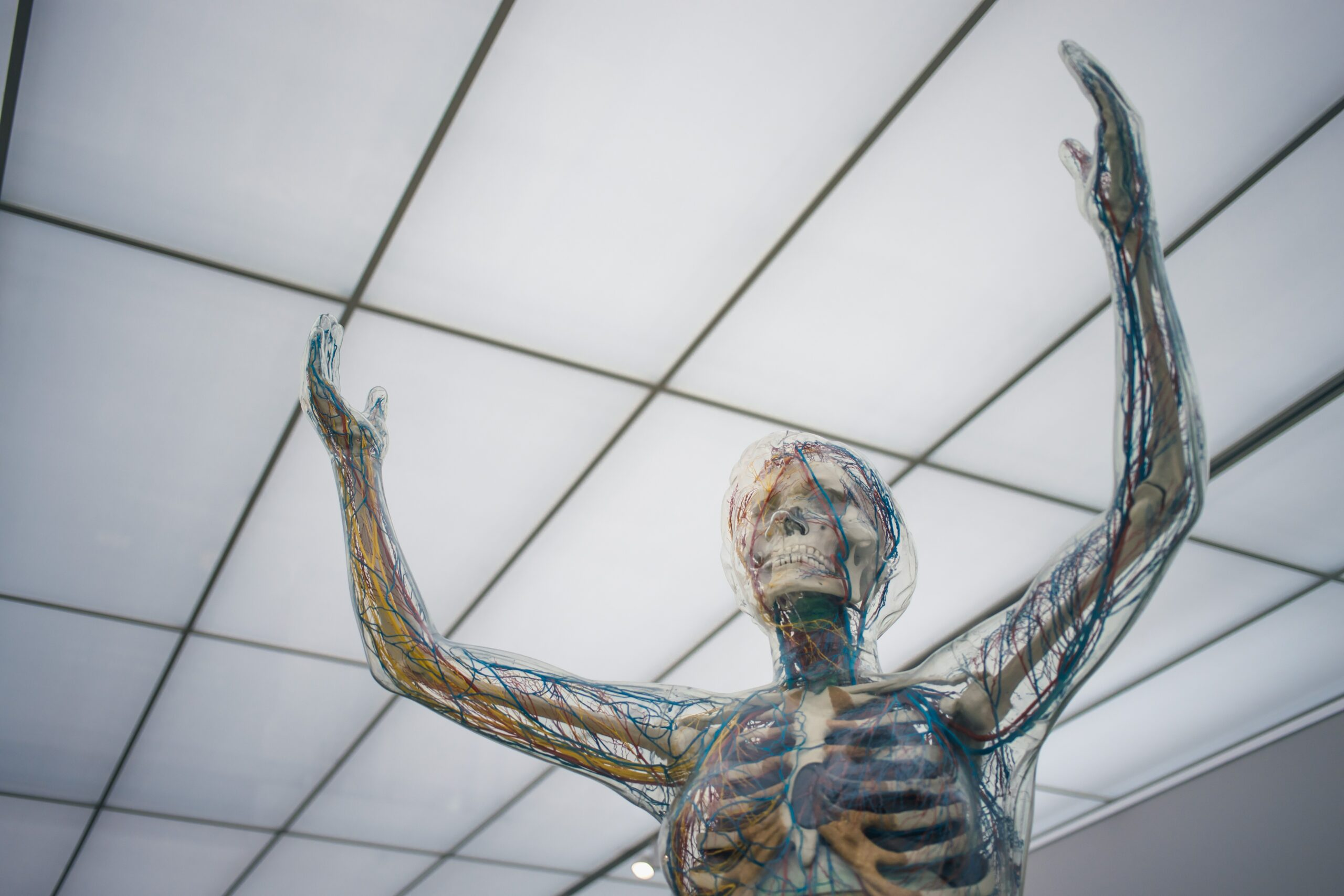 Panic might be triggered by signals from your bones