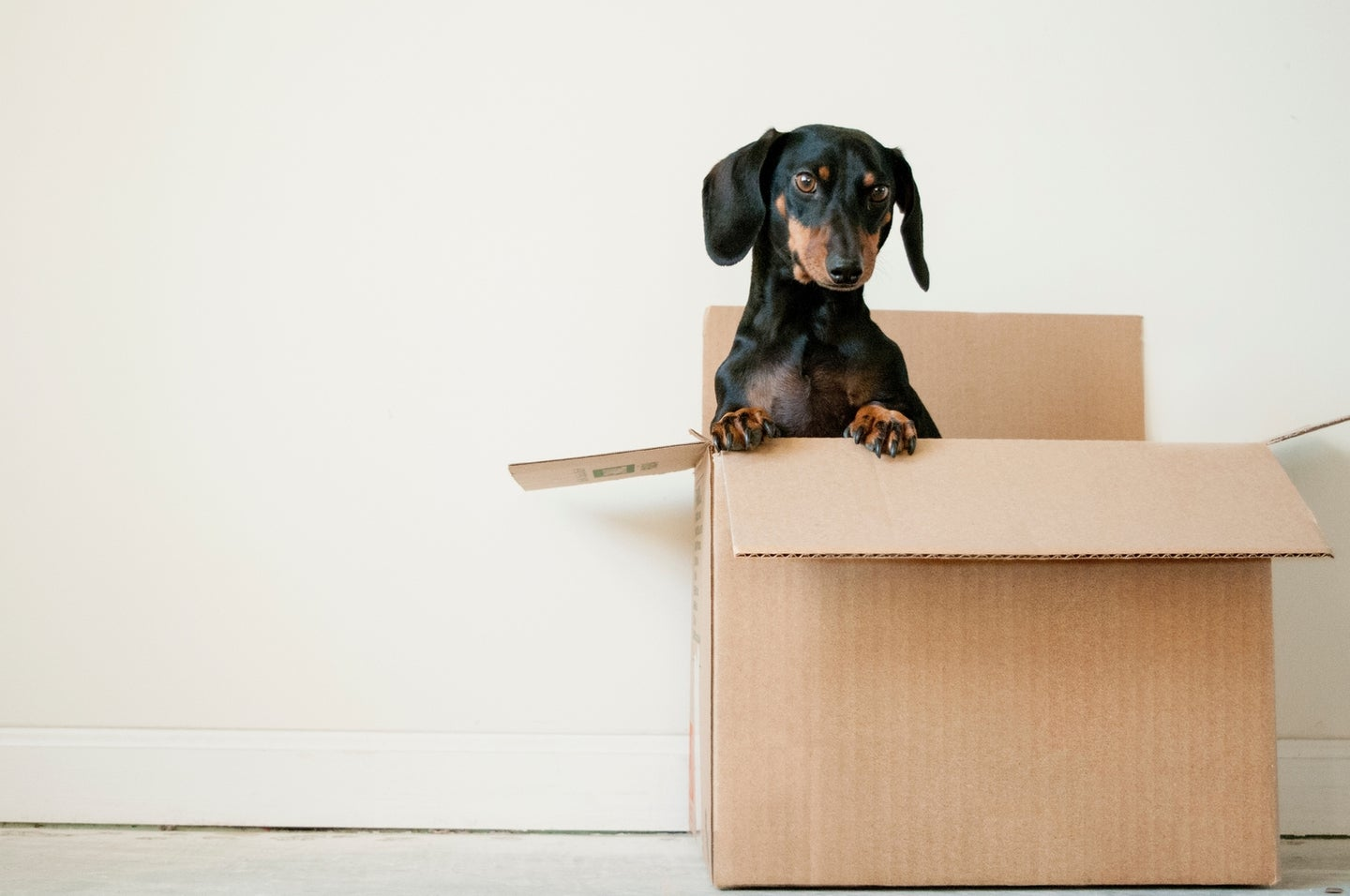Where to find cardboard boxes when you're moving