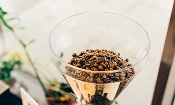 Burr grinders for a better tasting cup of coffee