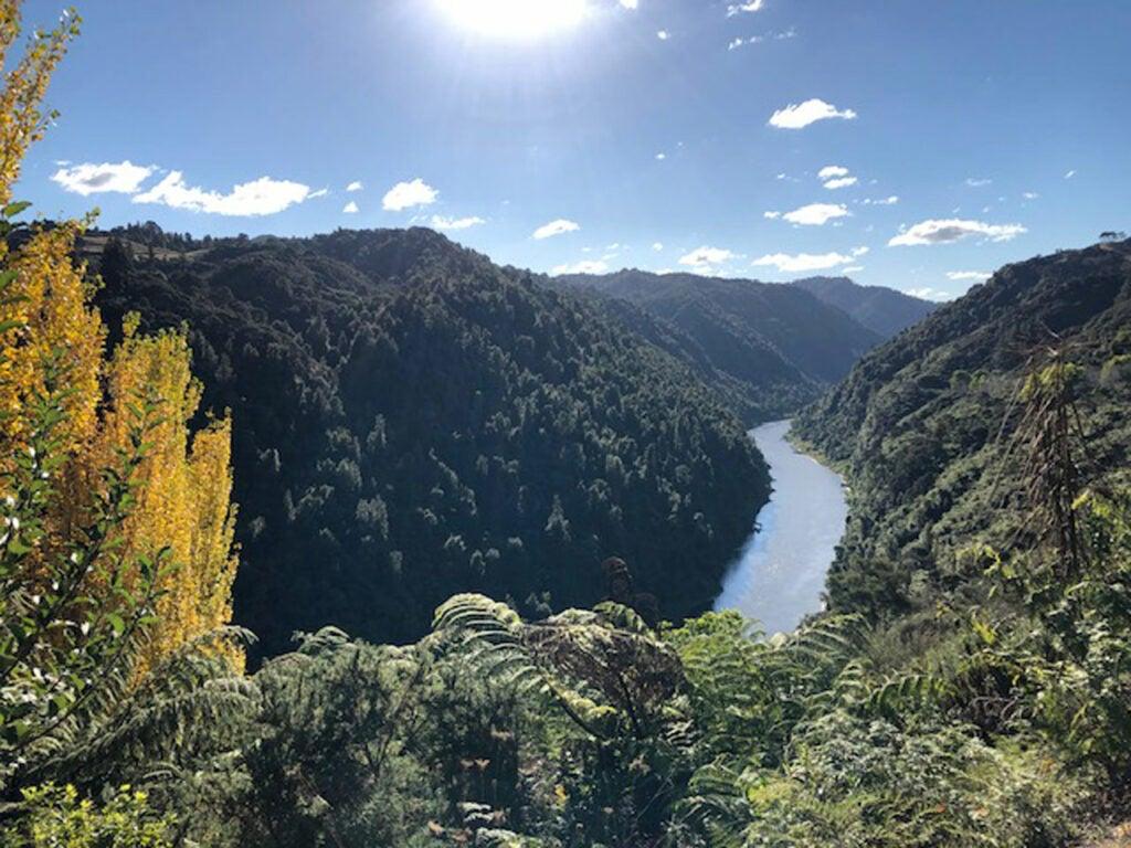 Whanganui river in New Zealand