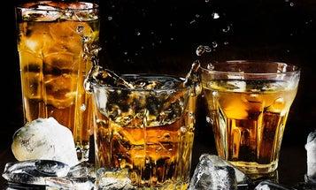 Twenty-three ways alcohol could save your life