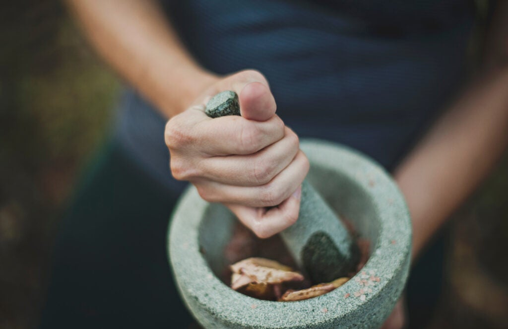 person grinding herbs in a mortar and pestle
