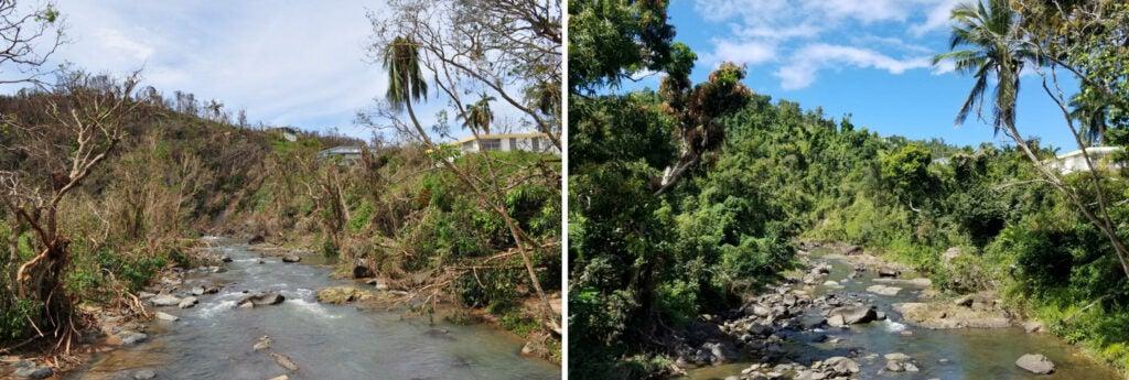Photos of the Espiritu Santo River in Puerto Rico 18 months apart