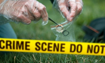 DNA databases may deter criminals, but at what cost?