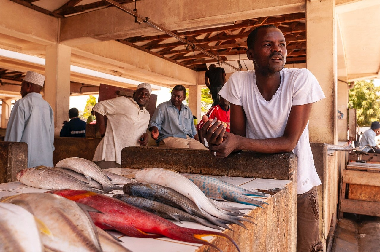 Why countries with loads of nutritious fish also have the most malnourished residents